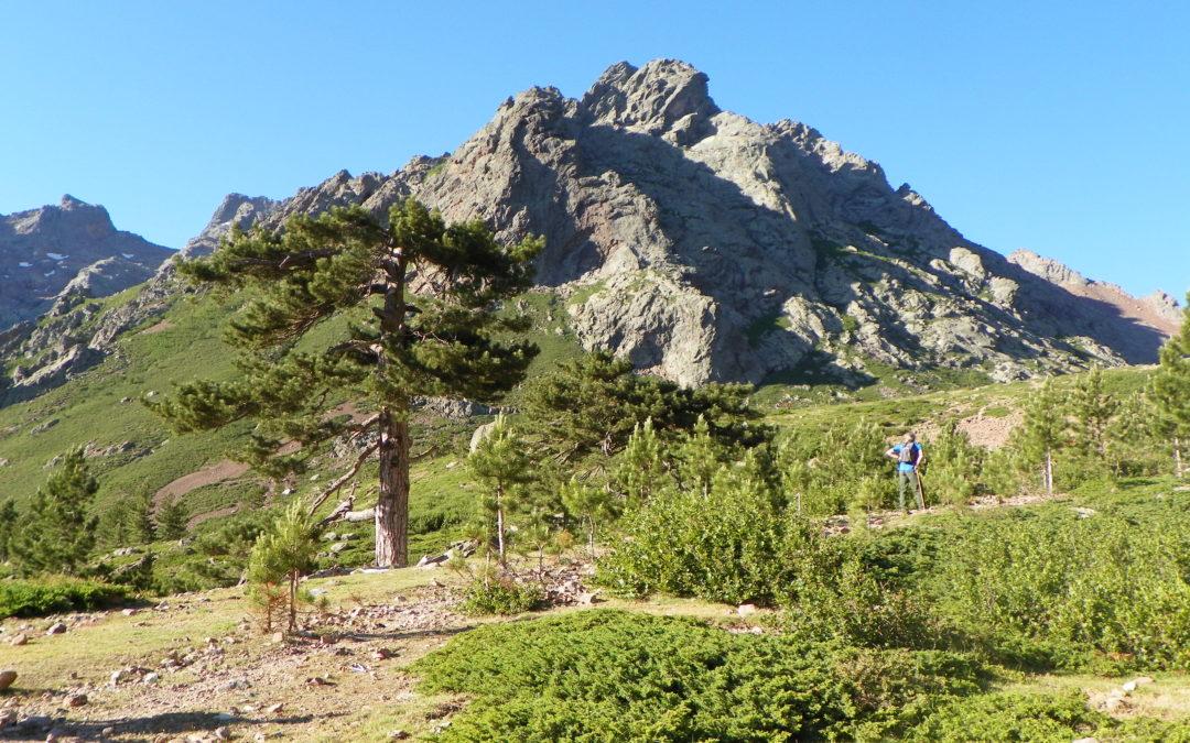 Étude de faisabilité technico économique et impact environnemental des activités touristiques sur le projet de la réserve naturelle d'ASCO – Collectivité de Corse